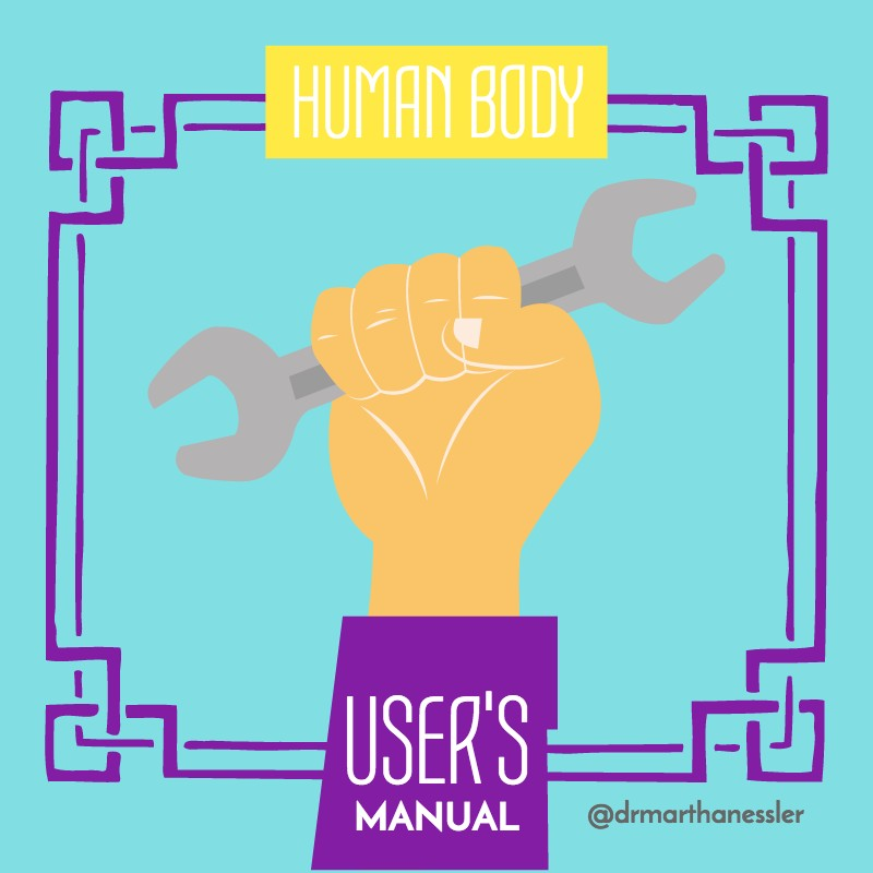 Human Body Users Manual